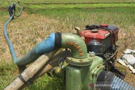 Petani Gunakan Pompa Air Untuk Pengairan