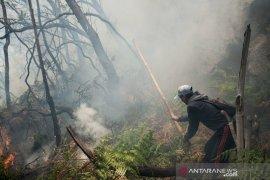 Hujan turun di kawasan Karhutla Kawah Putih Bandung, kurangi titik api