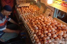 Harga telur ayam ras di pasar tradisional Ambon naik