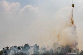 Satgas: Tiga heli pemadam karhutla dipindahkan dari Riau. Begini penjelasannya
