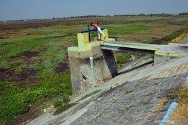 Antisipasi banjir, Pemkab Lamongan keruk 49 embung dan sungai