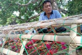 Keluarga mengaku terbantu urus kepulangan jenazah Wartono dari Taiwan