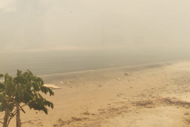Kabut asap akibat karhutla landa wilayah Mesuji Page 2 Small
