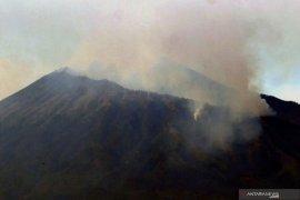 Kebakaran hutan Gunung Arjuno di wilayah Malang mulai terkendali