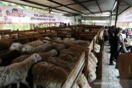 ACT Aceh nyatakan  Gampong Ie Suum jadi lokasi ternak domba wakaf
