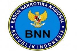 BNN mengungkap 33.371 kasus narkotika sepanjang 2019