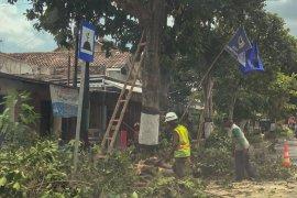 DLH Yogyakarta mengintensifkan pemangkasan pohon jelang musim hujan