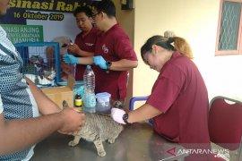 Cegah rabies, Pemkot Singkawang vaksin anjing dan kucing