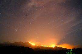 Areal hutan Pelawangan Senaru Gunung Rinjani terbakar