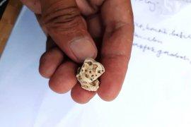 Gigi manusia prasejarah ditemukan di Situs  Yomokho