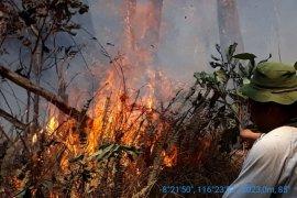 Kebakaran hutan Gunung Rinjani meluas