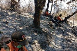 Tim penanganan karhutla terjebak kebakaran, sejumlah anggota dehidrasi berat