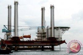 Pengamat Kawasan Ekonomi Khusus harap Presiden Jokowi perkuat daya saing Batam