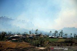 Kebakaran hutan pinus Page 2 Small
