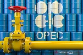 Minyak catat kenaikan pertama dalam tiga sesi didukung laporan OPEC