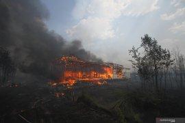 Di Banjar, Polisi selidiki terbakarnya rumah akibat Karhutla