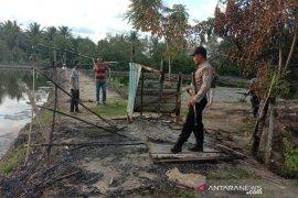Warga bakar gubuk tambak di Aceh Utara, diduga tempat nyabu