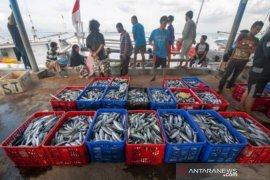 Kebutuhan tinggi, Pemprov Sulteng upayakan ekspor ikan ke Tiongkok