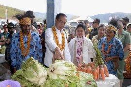 Kunjungan Jokowi ke Papua diharapkan berlangsung aman dan kondusif