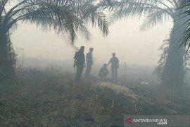 Karhutla di Riau jerat 9 tersangka perorangan