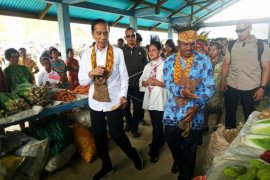 Kunjungan Presiden Jokowi ke Papua Barat Page 1 Small