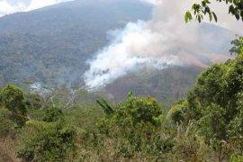 Hutan  Gunung Ciremai yang terbakan kian luas