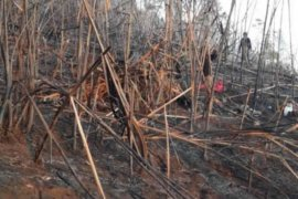 Kebakaran kawasan Gunung Ciremai sudah dipadamkan