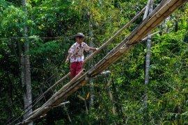 Pembangunan jembatan gantung, didambakan warga pedalaman Lebak