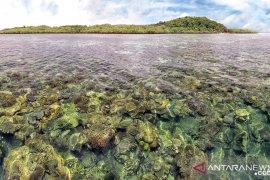 Kunjungan wisatawan di Bangka Belitung capai 36.098 orang