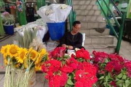 Di Pasar Bunga Rawa Belong bunga matahari paling diminati