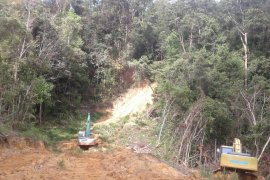 Perusahaan tambang diduga lakukan pembabatan hutan di Kabupaten Sanggau