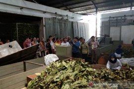 Balai Karantina genjot ekspor produk pertanian