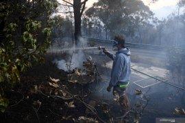 Kebakaran hutan, dua orang ditemukan tewas dan 100 rumah hancur di Australia