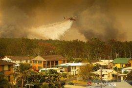 Kebakaran hutan landa Australia