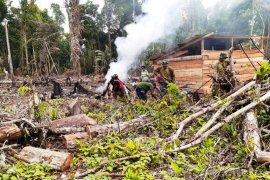 Untuk pembangunan gereja Pamtas, TNI bersama warga buka lahan