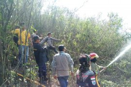 Hutan di Nyalindung Sukabumi terbakar seluas delapan hektare