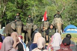 Gajah ikut peringatan hari pahlawan di CRU Sampoiniet  Aceh