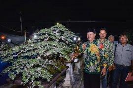 Pemkot Madiun fasilitasi Festival Bonsai 2019 peringati Hari Pahlawan