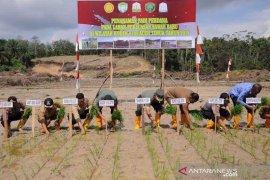 Kodim Aceh Timur tanam perdana 100 hektare padi di lokasi sawah baru