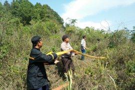 Puntung rokok diduga jadi penyebab kebakaran hutan di Sukabumi