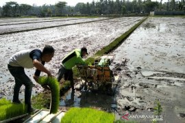 Ahli : Perampungan data SDM pertanian perlu didorong sebagai antisipasi krisis petani