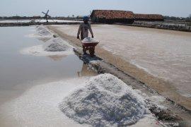 Bangun proyek percontohan garam industri