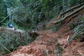 Tebing gunung Longsor  di jalur Aceh Barat - Pidie lumpuhkan transportasi