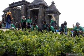 Menapaki warisan sejarah di Ratu Boko sambil jaga lingkungan