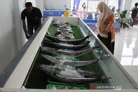 Pemerintah ajak masyarakat budayakan konsumsi ikan