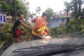 BPBD Tulungagung imbau warga siaga bencana jelang
