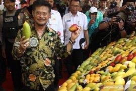 Kementerian Pertanian dorong ekspor buah lokal
