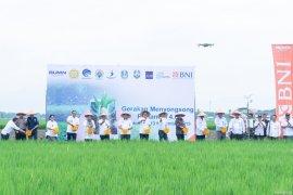 Petani di Situbondo gunakan teknologi 4.0