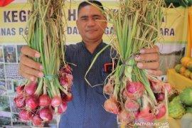 Aceh Utara pasok bawang merah dari luar Sumatera