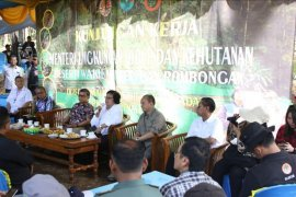 Pemerintah alokasikan rehabilitasi hutan dan lahan Rp2,7 triliun